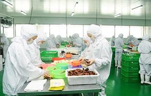 重庆四川麻辣底料、酱料,美鑫乐虎体育厂贴牌、代加工出口