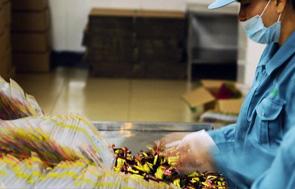 驰骋千亿调味品市场海天味业业绩加速增长